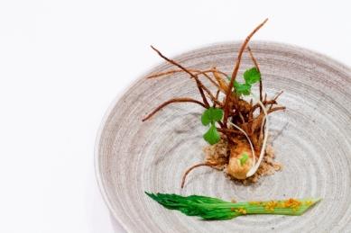 Garden_Celery_Root_with_Hazelnuts(katiepark)_web